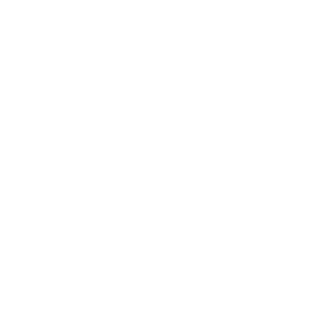 ROUND BIRDS