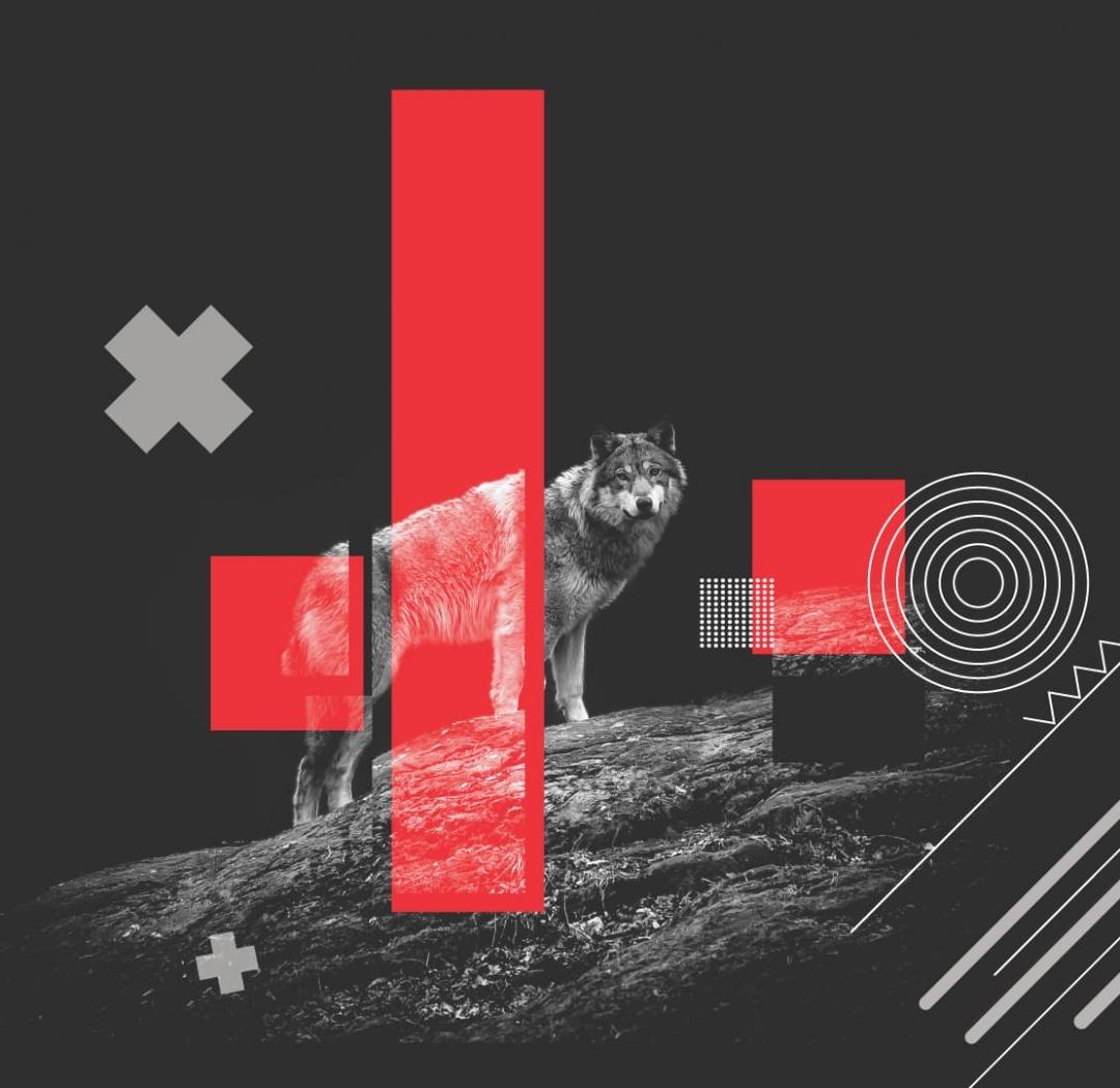 HORI – ALBUM COVER